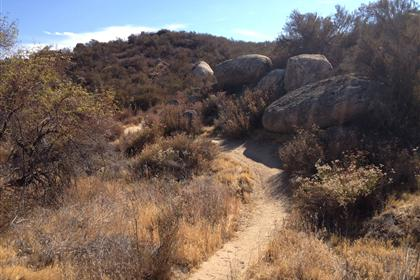 Simpson Park Trail